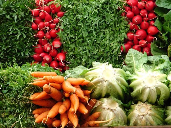 Um problema de saúde levou um casal a abrir uma empresa especializada no consumo de orgânicos (Foto: Reprodução / Facebook)